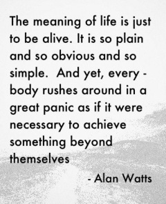 The Meaning of Life - Alan Watts quote