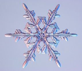 The distinctive pattern of a snowflake has been described as an emergent property in which relation to temperature, humidity, and pressure results in novel configurations of water.
